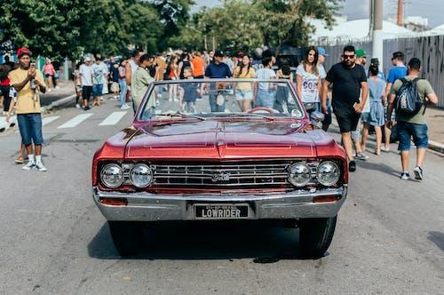 Imagine de stoc gratuită din drum, fotografie urbană, mașină cu scut jos, Pexels