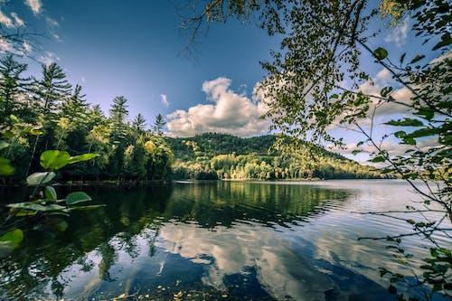 Ingyenes stockfotó #természet, #víz, élet a természetben, felhő témában