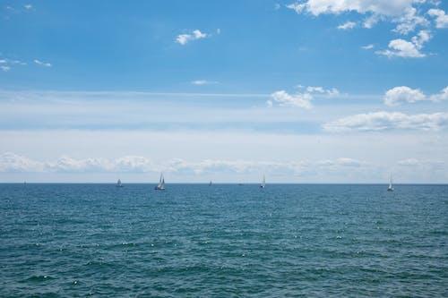 Imagine de stoc gratuită din albastru, apă, barcă cu vele, frumos
