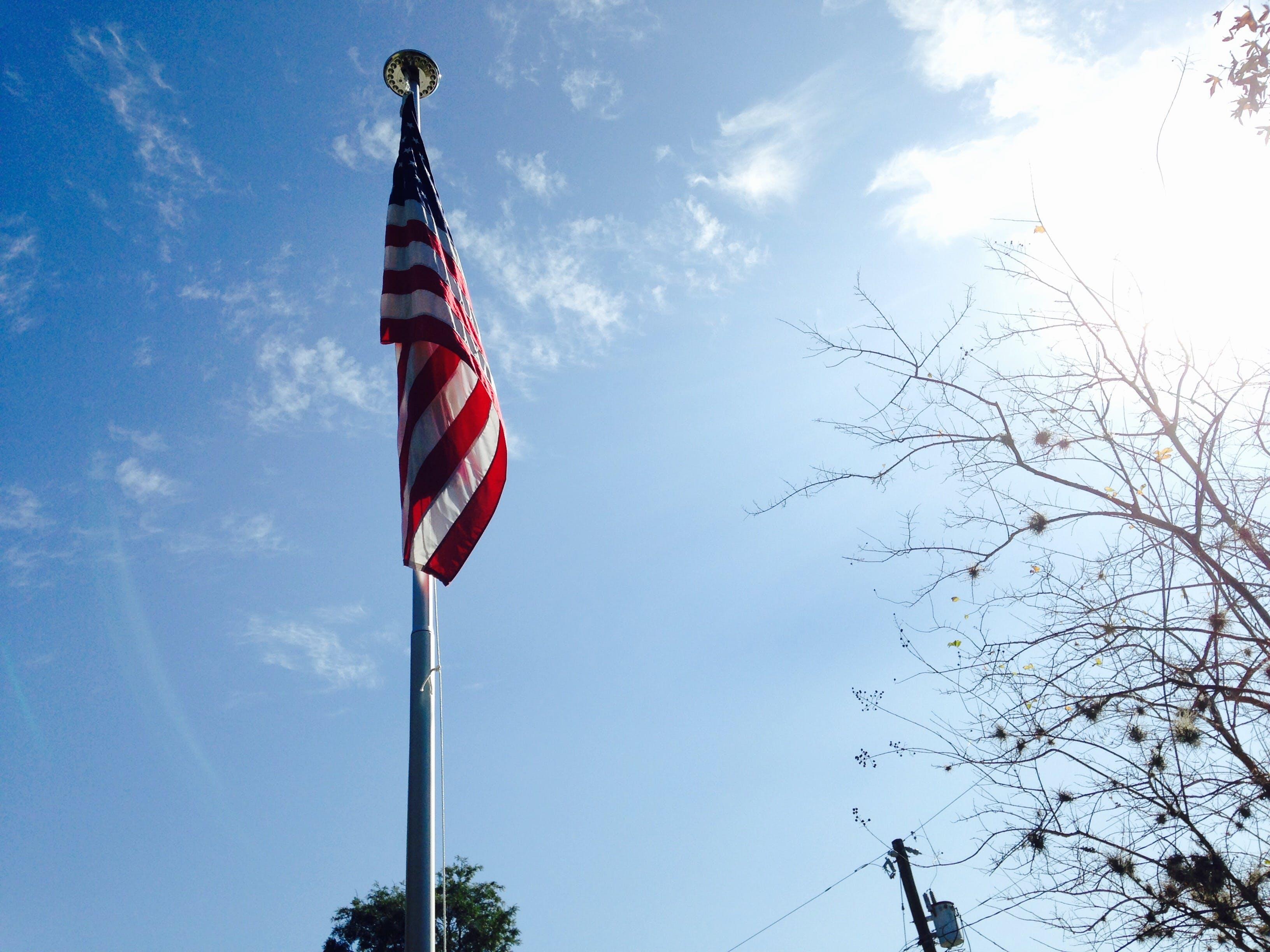 Gratis lagerfoto af Amerikansk flag