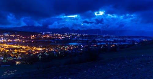 Free stock photo of blue heron, nightlife, panorama