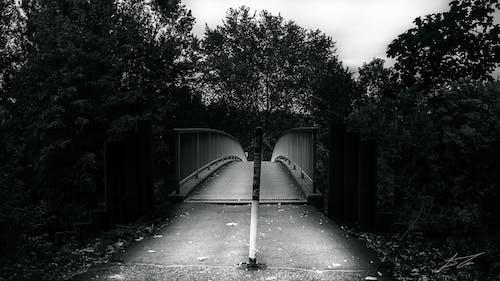 Free stock photo of bay bridge, monochrome photography
