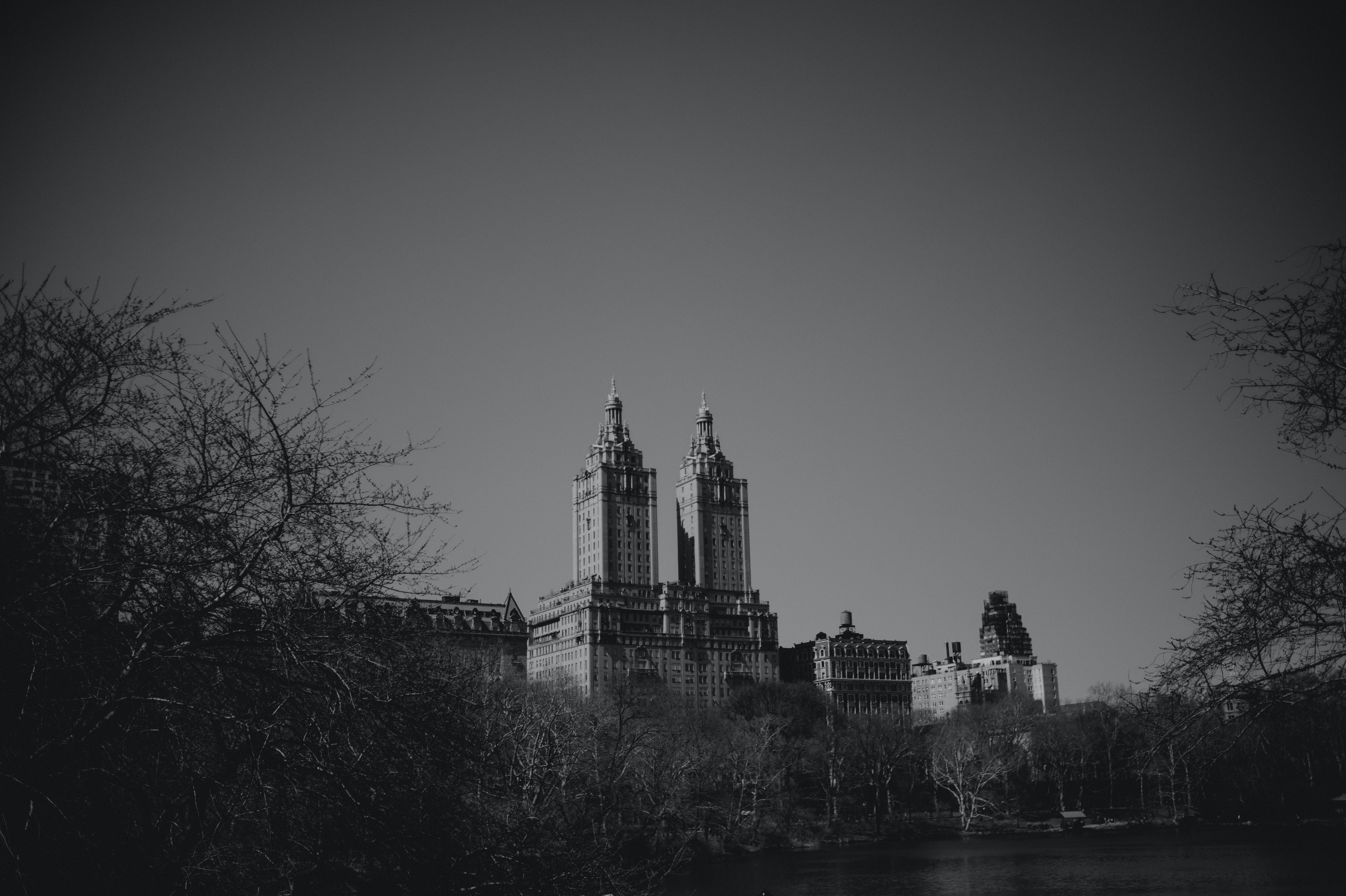 Grayscale Photo of Buildings over the Tree