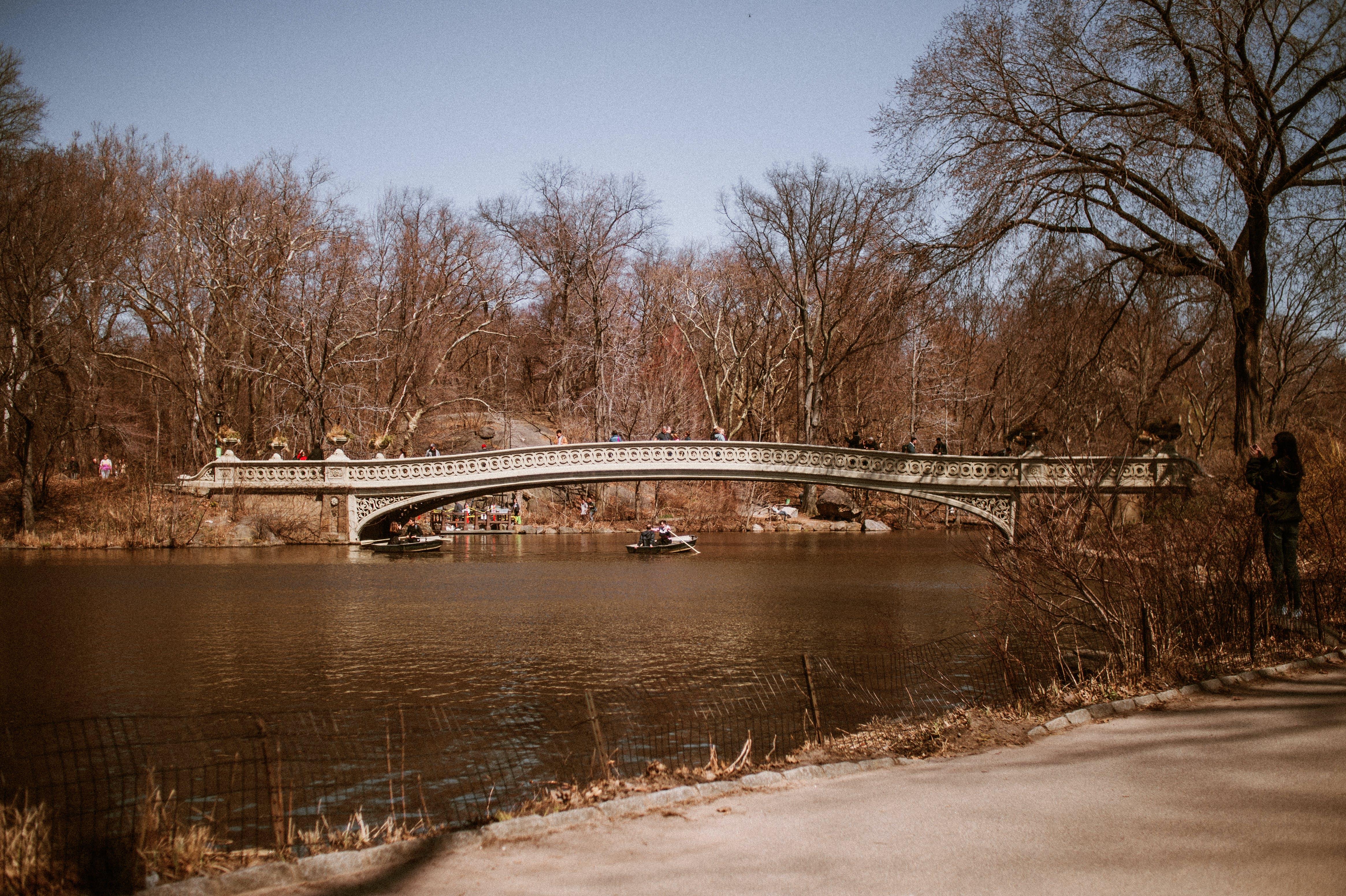 canoe passing under rhe Bridge