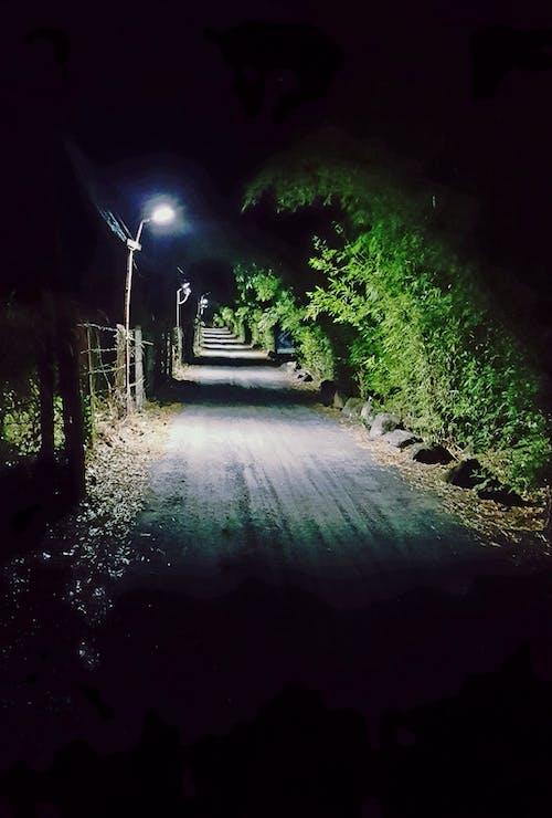 Free stock photo of laneway, night