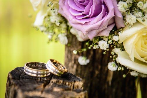 姻緣, 婚戒, 浪漫, 玫瑰 的 免費圖庫相片