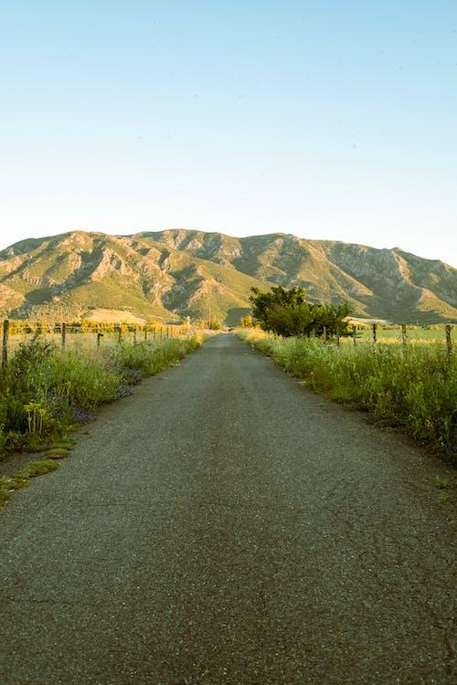 Kostnadsfri bild av berg, dagsljus, fält, gräs