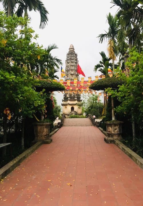 Kostenloses Stock Foto zu beten, buddhismus, tempel, vietnam