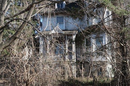 Základová fotografie zdarma na téma dům, klasický, okna, starý