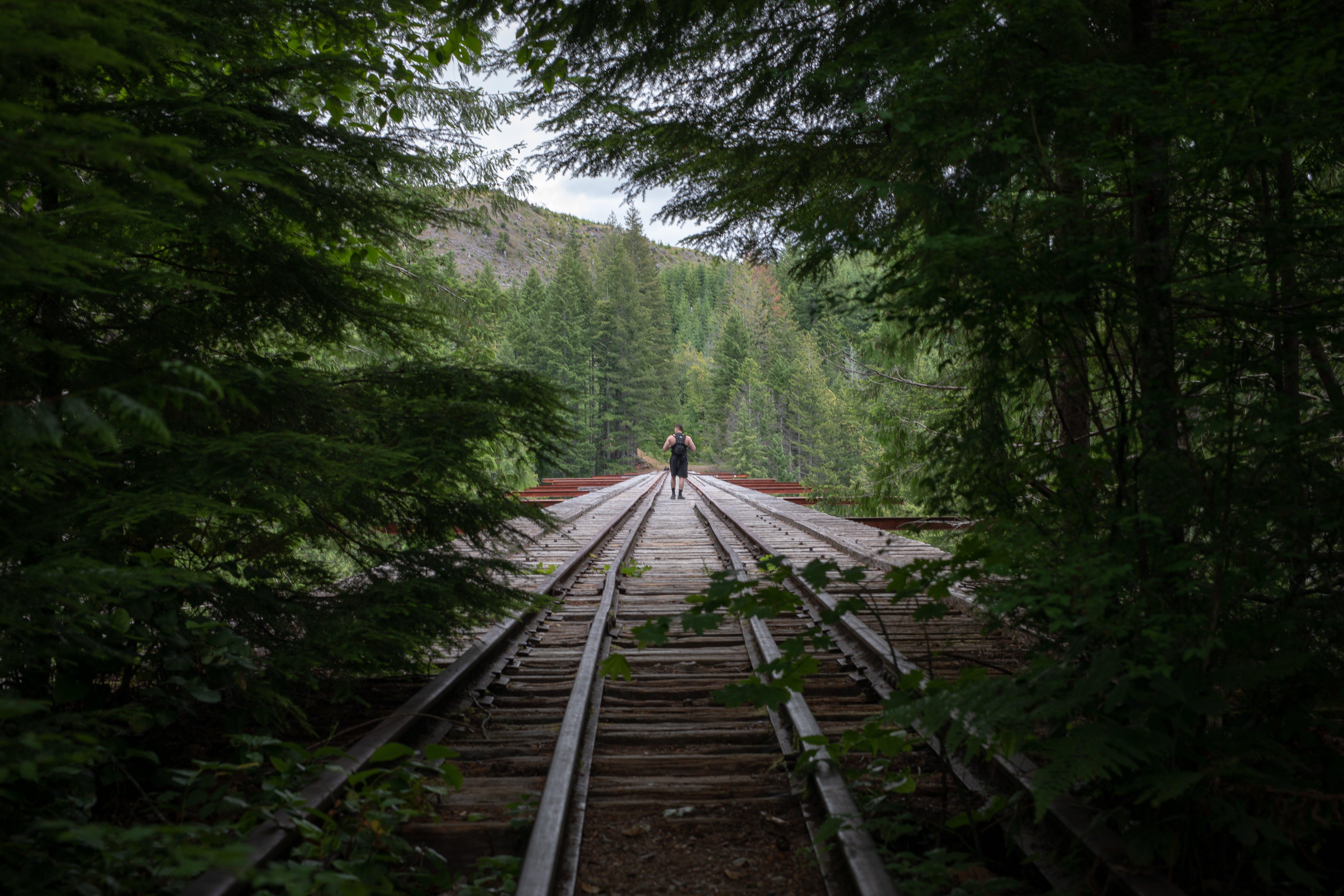 Foto profissional grátis de aconselhamento, andando, ao ar livre, árvores
