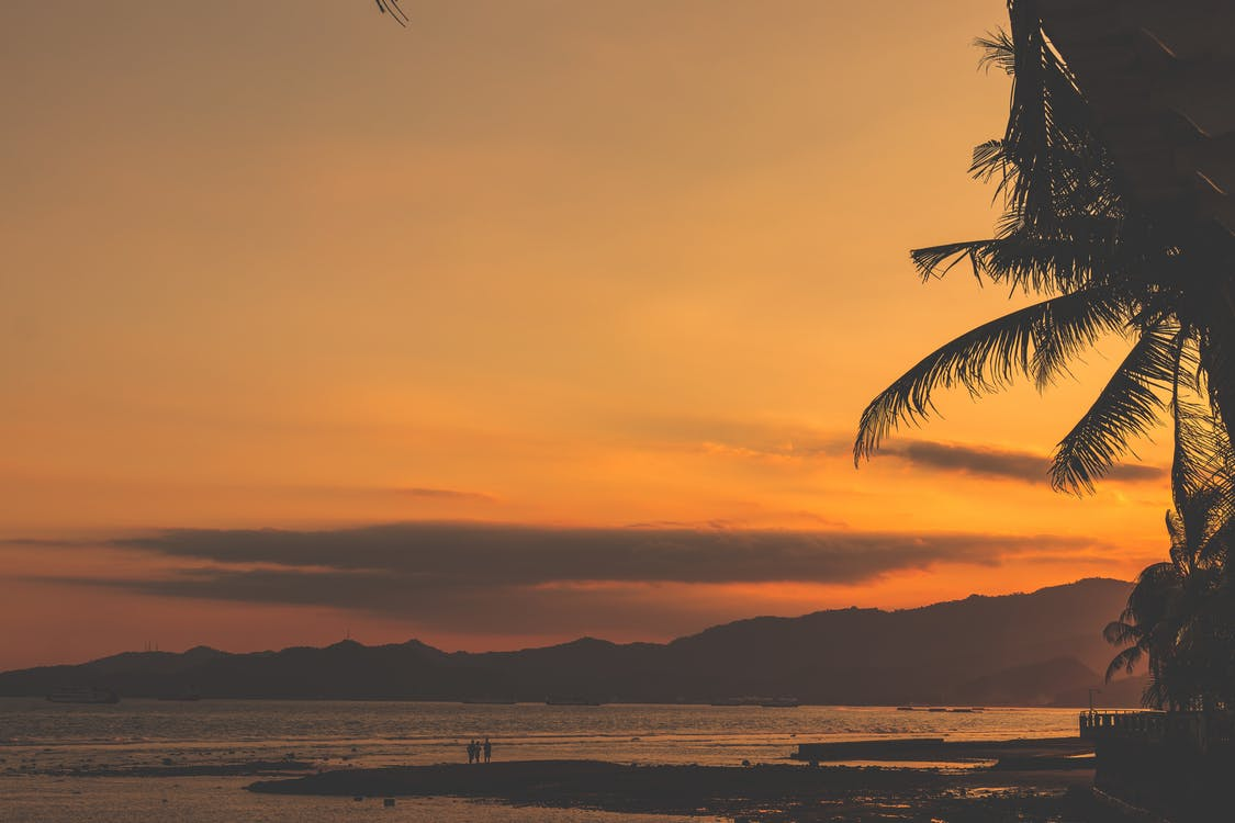 Sunset over Beach With People and Coconut Palm Trees