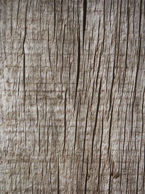 ナチュラル, ラフな, 乾燥, 壁の無料の写真素材