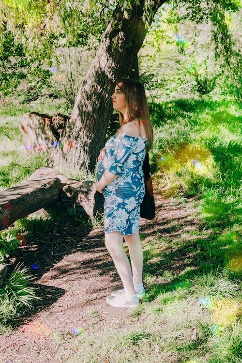 Бесплатное стоковое фото с беременная, беременность, дерево, деревья