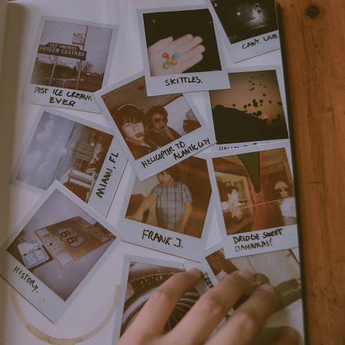 Foto d'estoc gratuïta de àlbum, banda, concert, foto