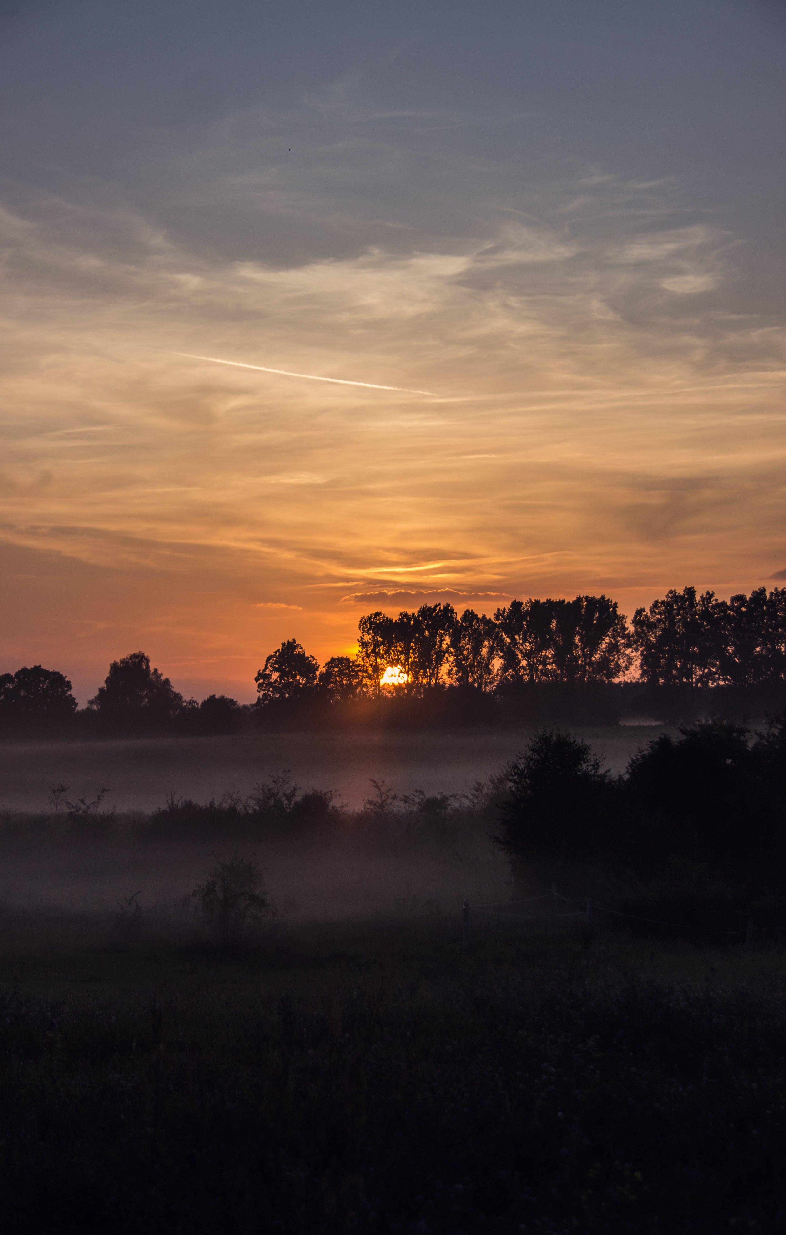 Foto stok gratis awan, bayangan hitam, bidang, biru