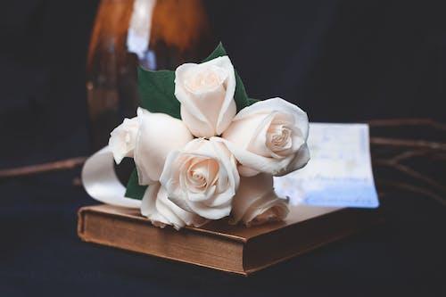 꽃, 꽃다발, 낭만적인, 로맨스의 무료 스톡 사진