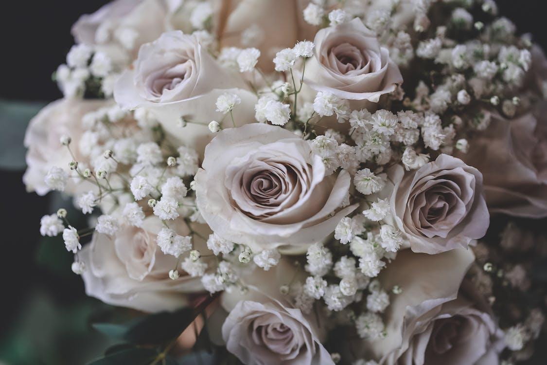 Selective Focus Photo of Rose Bouquet