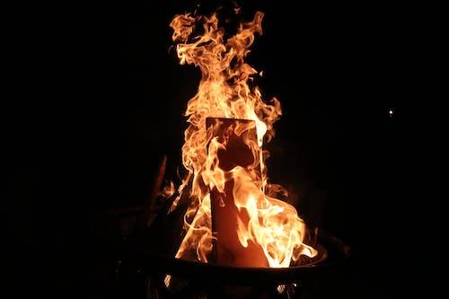검게 탐, 모닥불, 불의 무료 스톡 사진