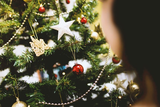 Free stock photo of blur, decoration, christmas, xmas