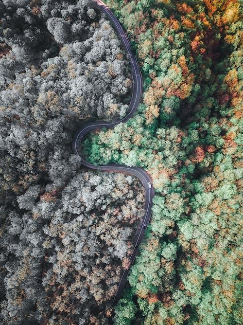 Ilmainen kuvapankkikuva tunnisteilla droonikuva, droonikuvaus, drooninäkymä, ilmakuvaus