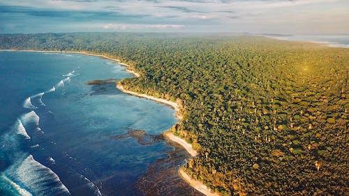 夏天, 島, 戶外, 招手 的 免費圖庫相片