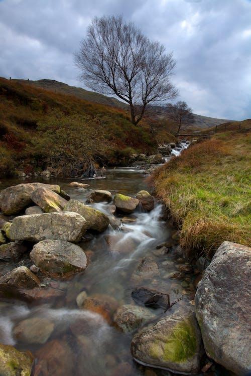 Kostnadsfri bild av bäck, berg, dyster, gräs