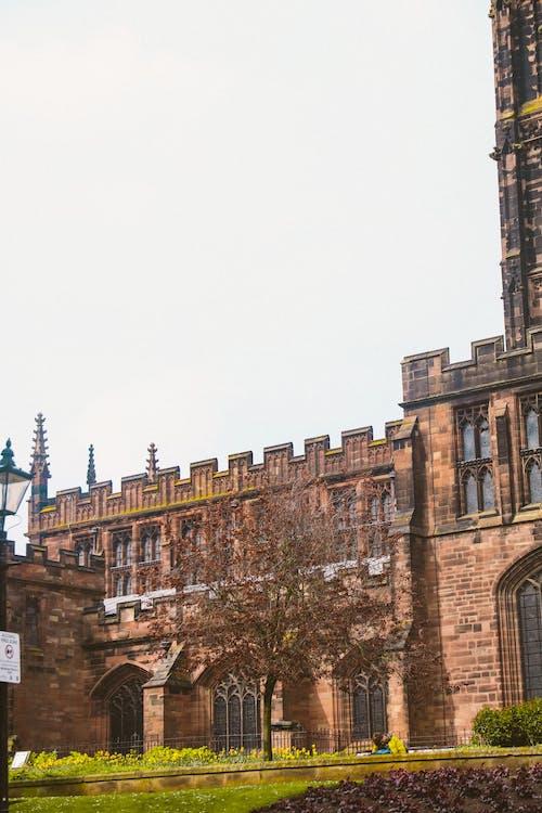 Foto d'estoc gratuïta de catedral, Església, gent, seients