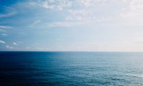 Základová fotografie zdarma na téma denní světlo, horizont, malebný, mávání