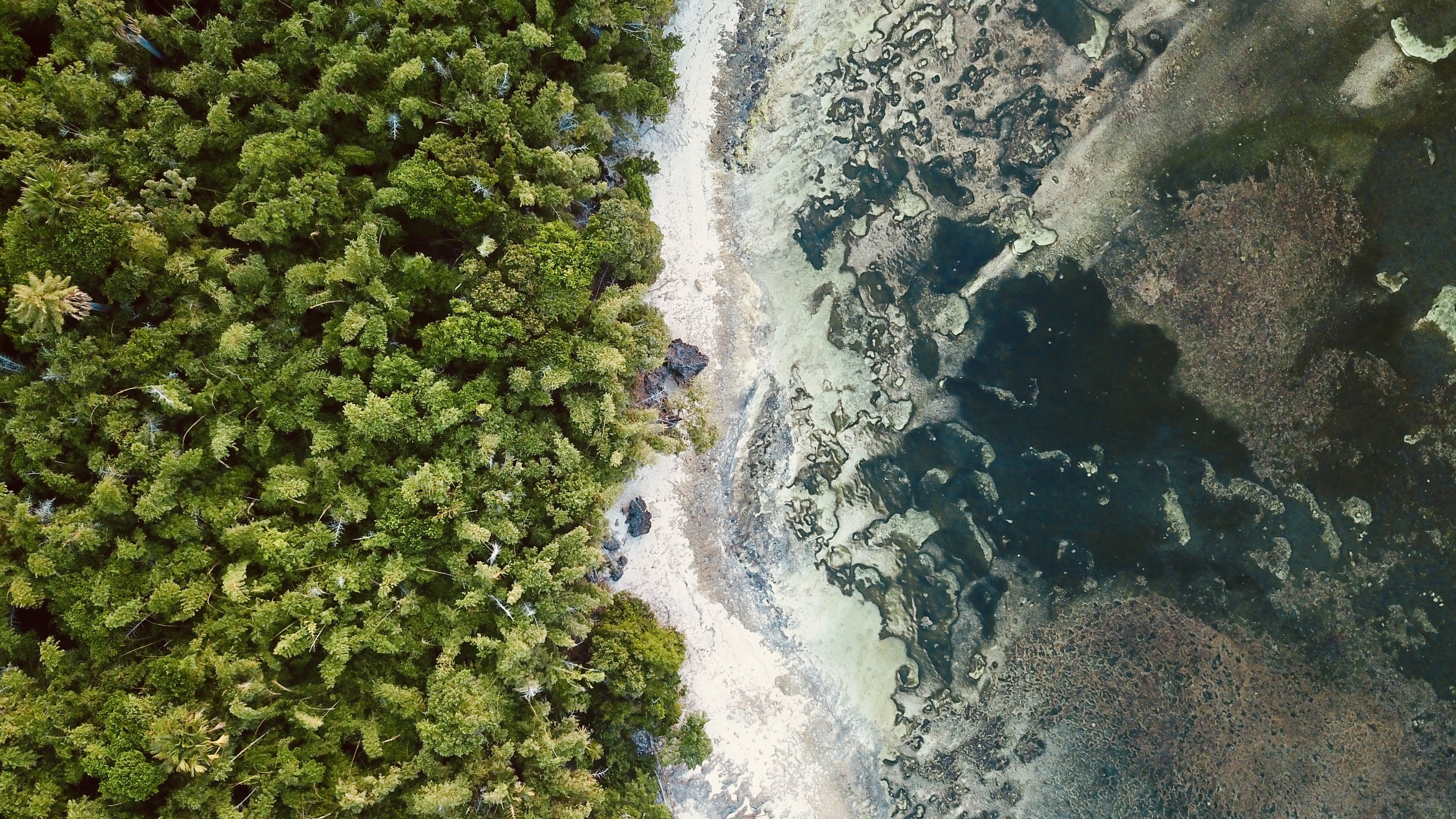Aerial Photography of Beach and Island