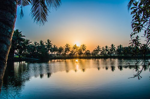 Free stock photo of india, lake, nature, pond