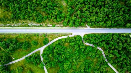 Бесплатное стоковое фото с дорога, дрон, съемка с дрона, фото с дрона