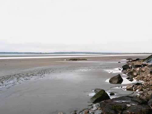 คลังภาพถ่ายฟรี ของ ชายหาด, ทะเล, น้ำลง, มหาสมุทร