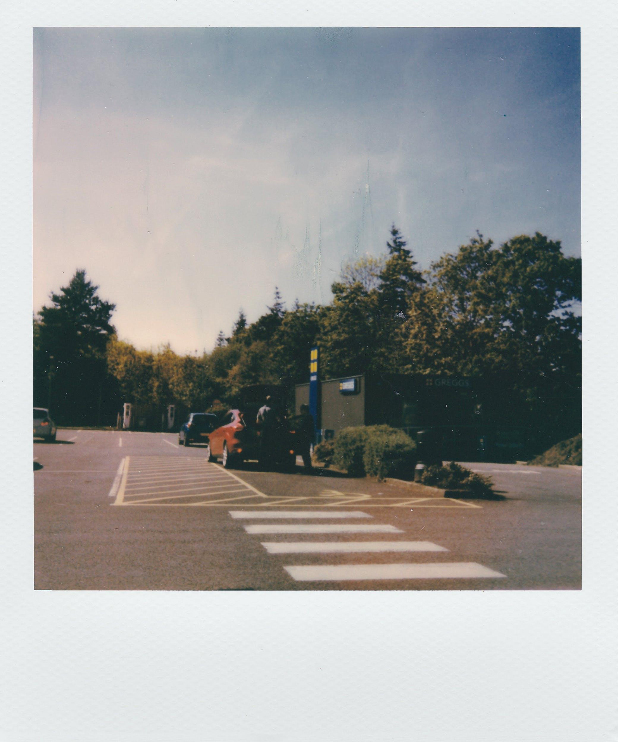 Immagine gratuita di alba, albero, asfalto, auto