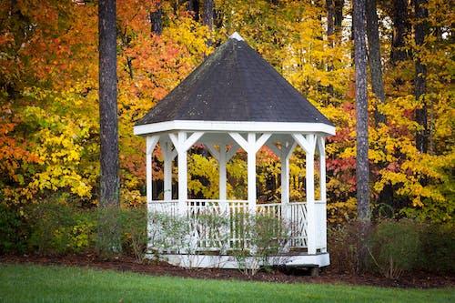 Free stock photo of fall colors, gazebo, landscape