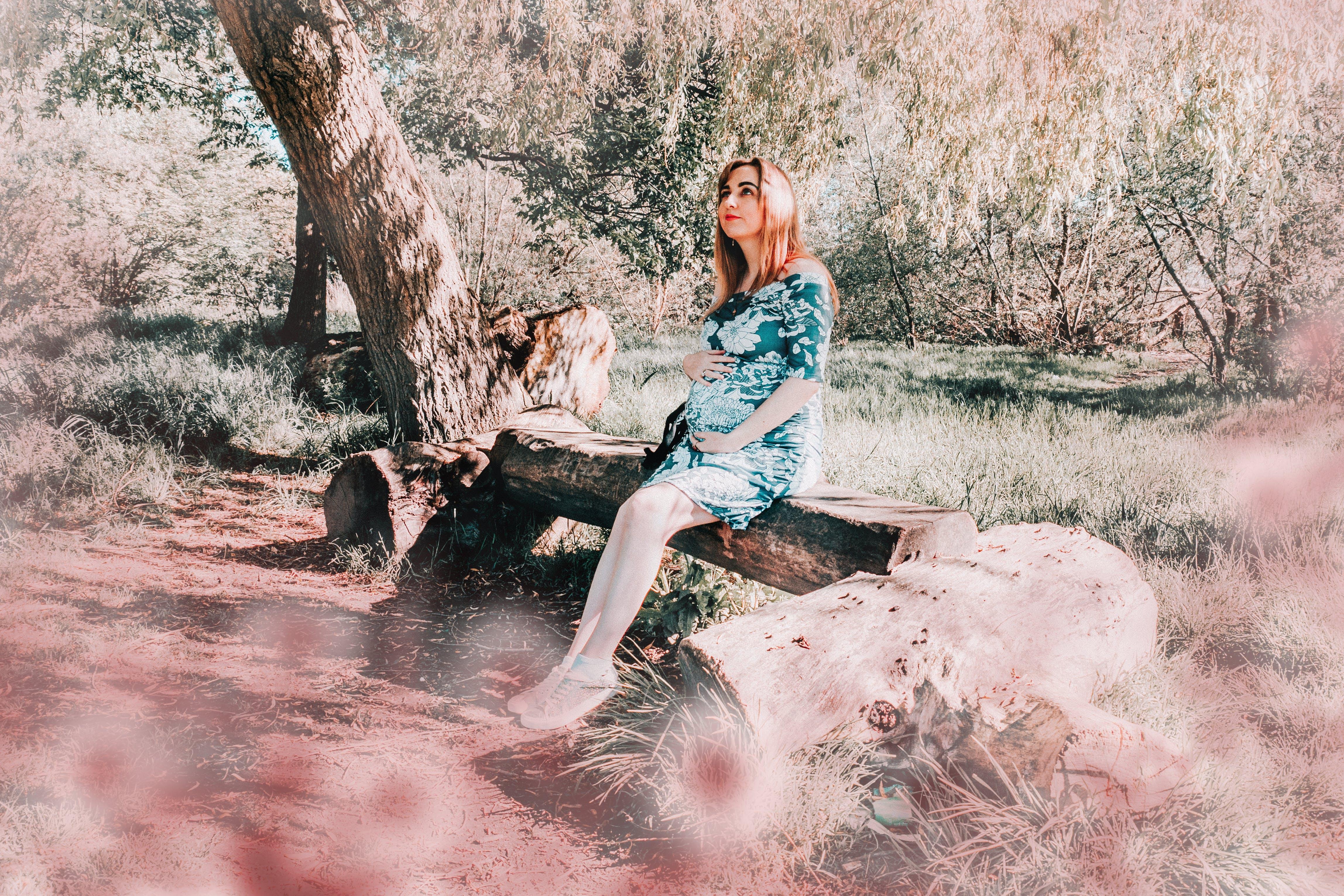 Immagine gratuita di albero, donna, fuori, incinta