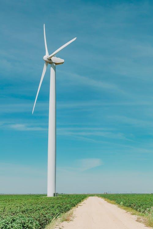 Darmowe zdjęcie z galerii z energia, energia alternatywna, energia odnawialna, farma wiatrowa
