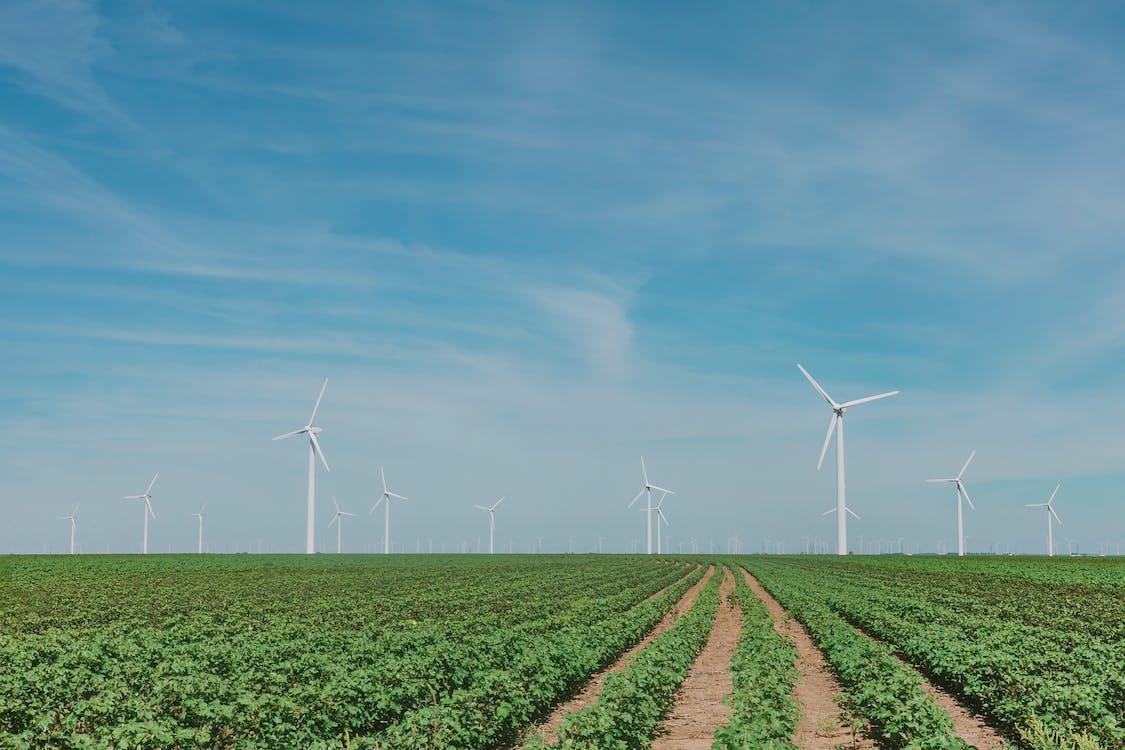 agricultură, alternativă, cer