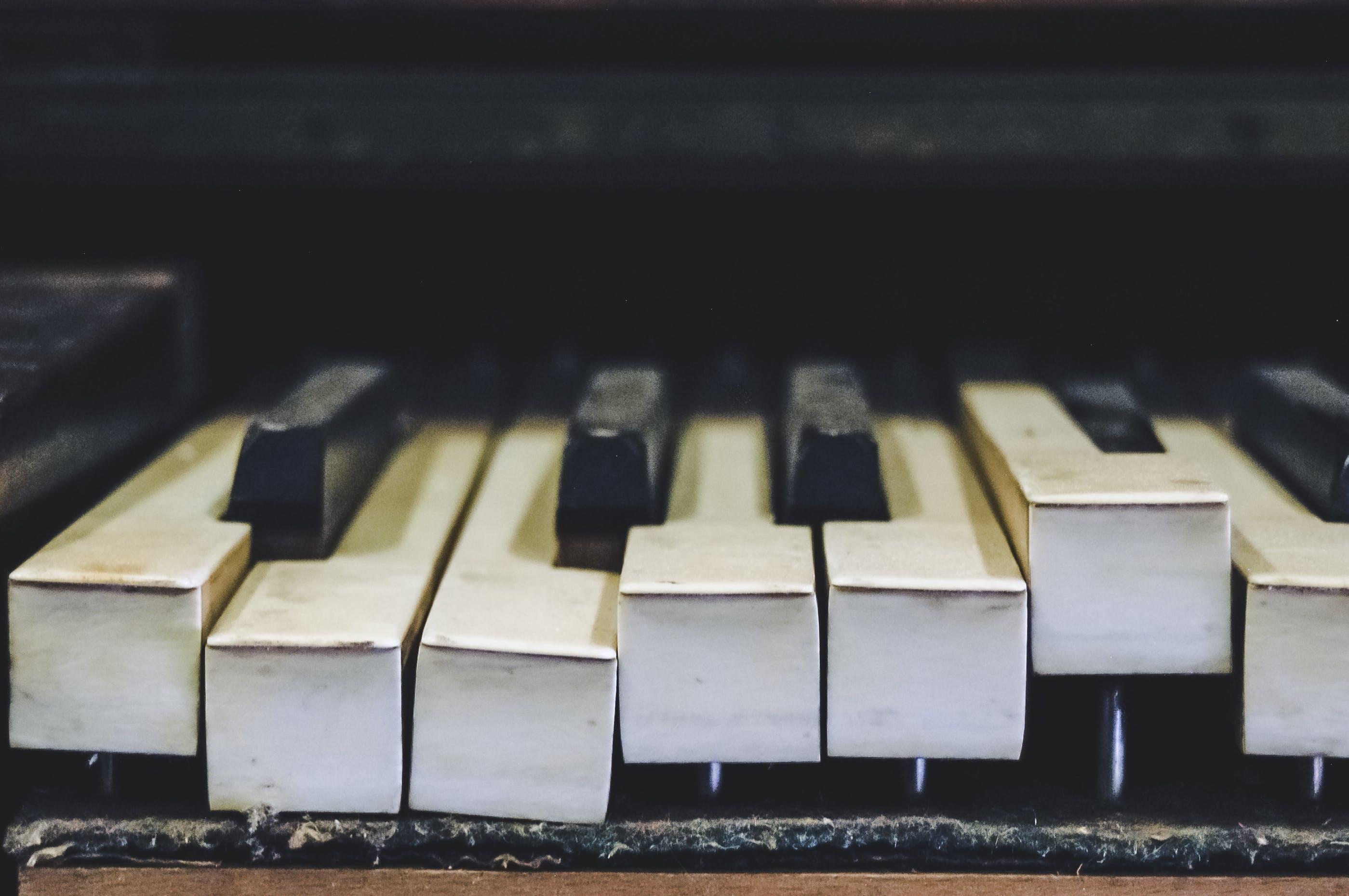 Gratis lagerfoto af klavertangenter, lukke op, musikinstrument, tastatur