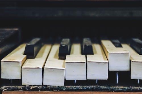 Imagine de stoc gratuită din clape de pian, instrument muzical, prim-plan, tastatură