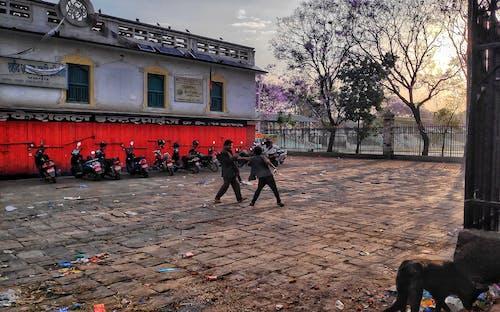 ネパール, フード, 戦い, 貧困の無料の写真素材