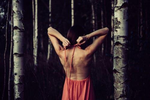Základová fotografie zdarma na téma dospělý, dřevo, focení, holka