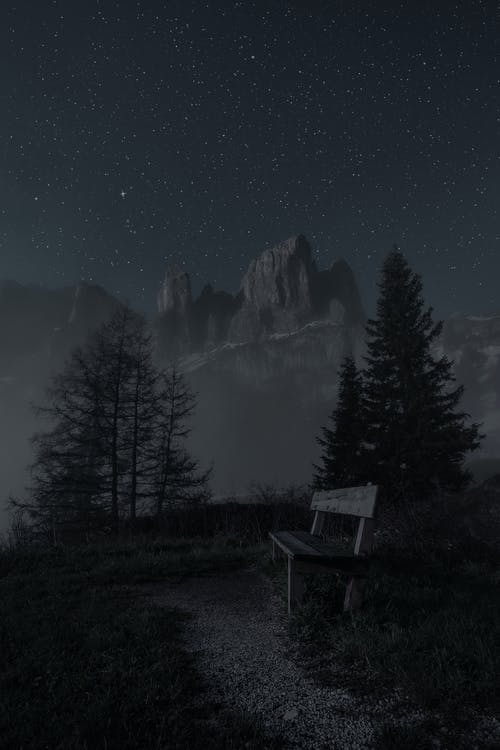 Empty Bench during Night Time