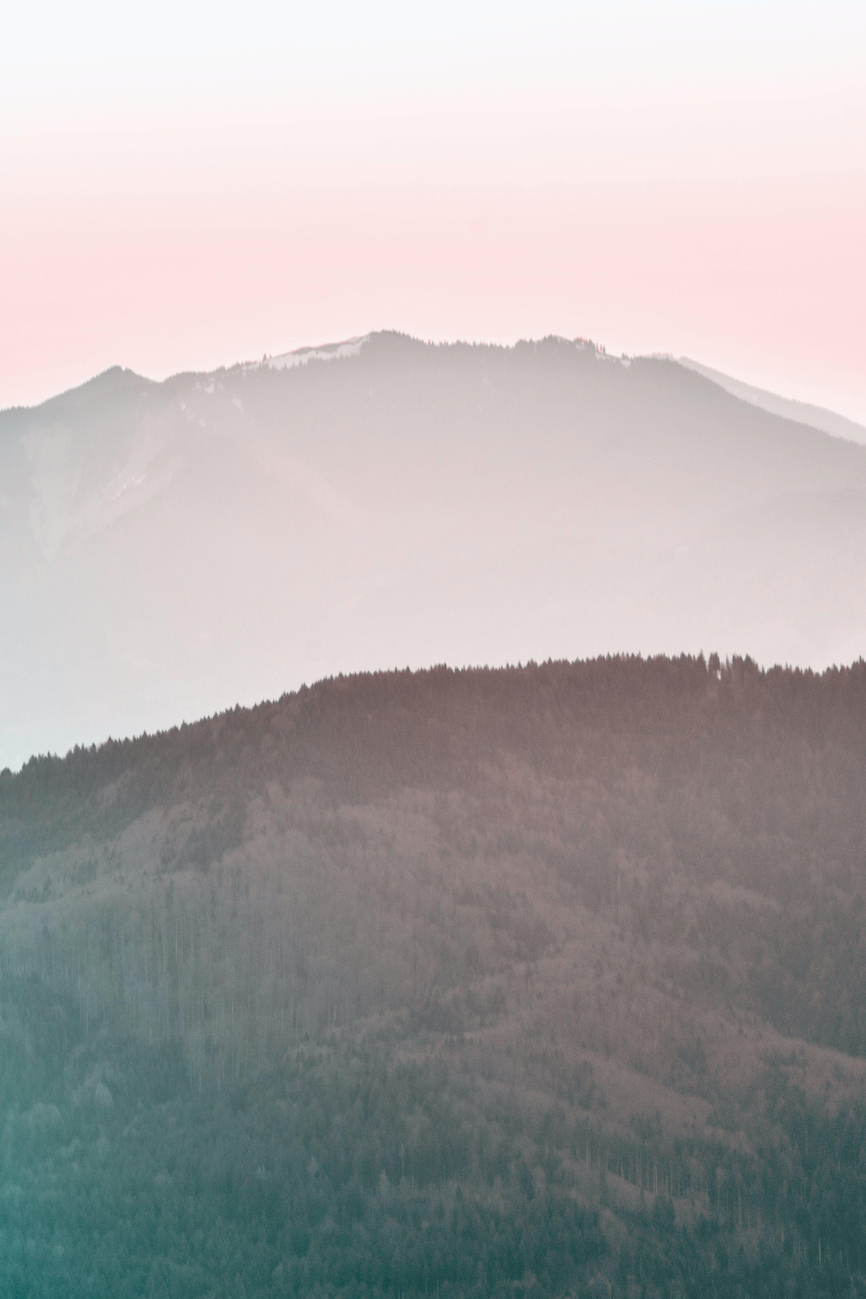Immagine gratuita di alba, alberi, ambiente, collina