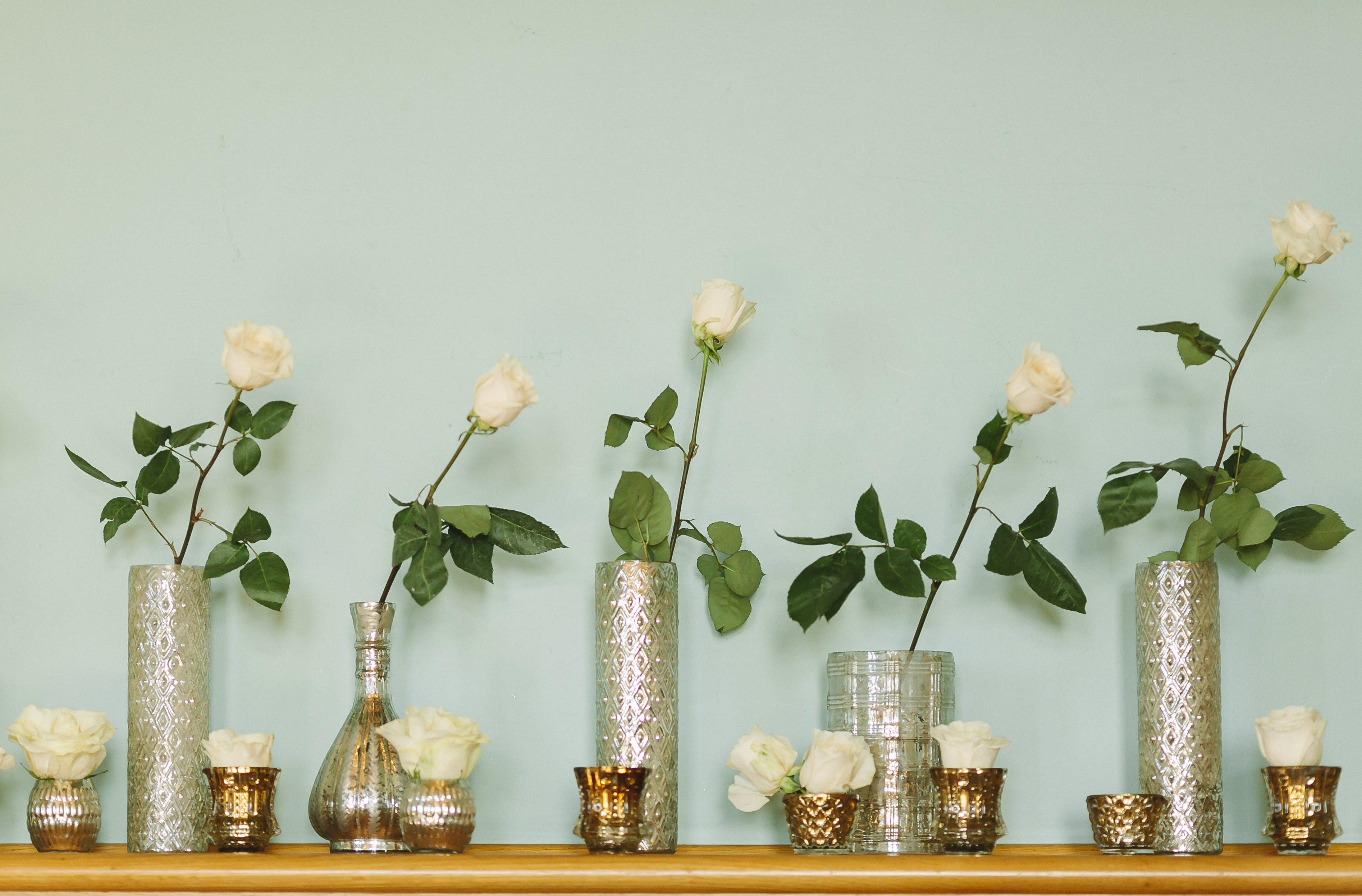 Gratis lagerfoto af blad, blomst, blomster, blomsterarrangement