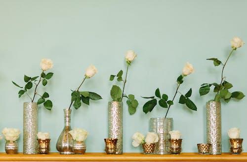 Ảnh lưu trữ miễn phí về bình hoa, cái bình hoa, cắm hoa, cánh hoa
