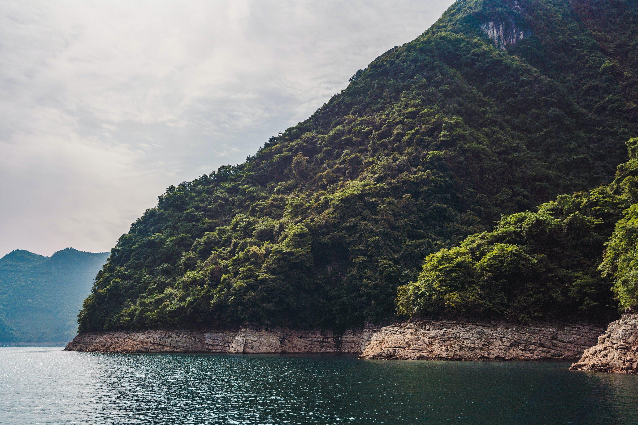 Foto d'estoc gratuïta de a l'aire lliure, aigua, arbres, Costa