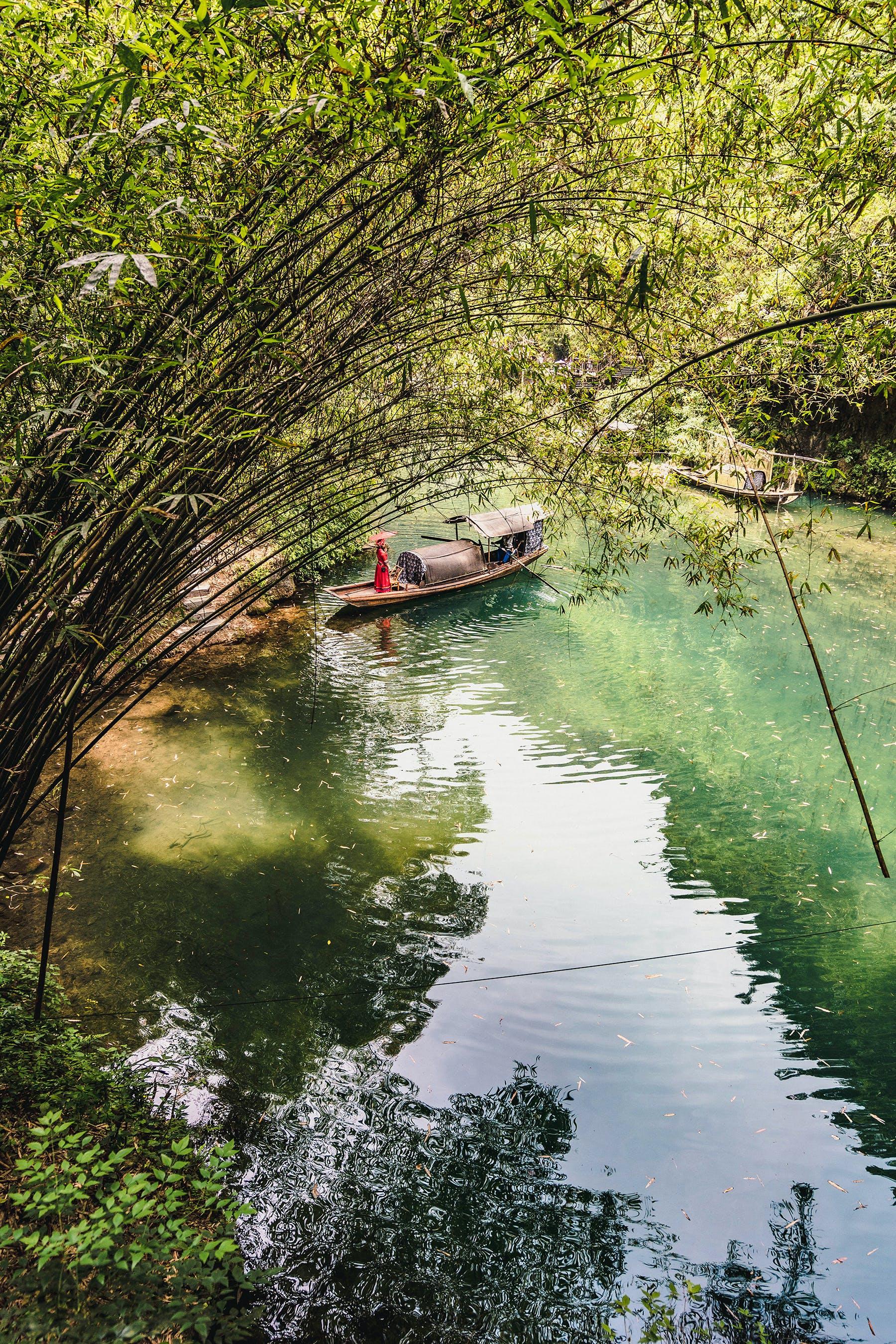 Gratis lagerfoto af båd, blade, dagslys, flod
