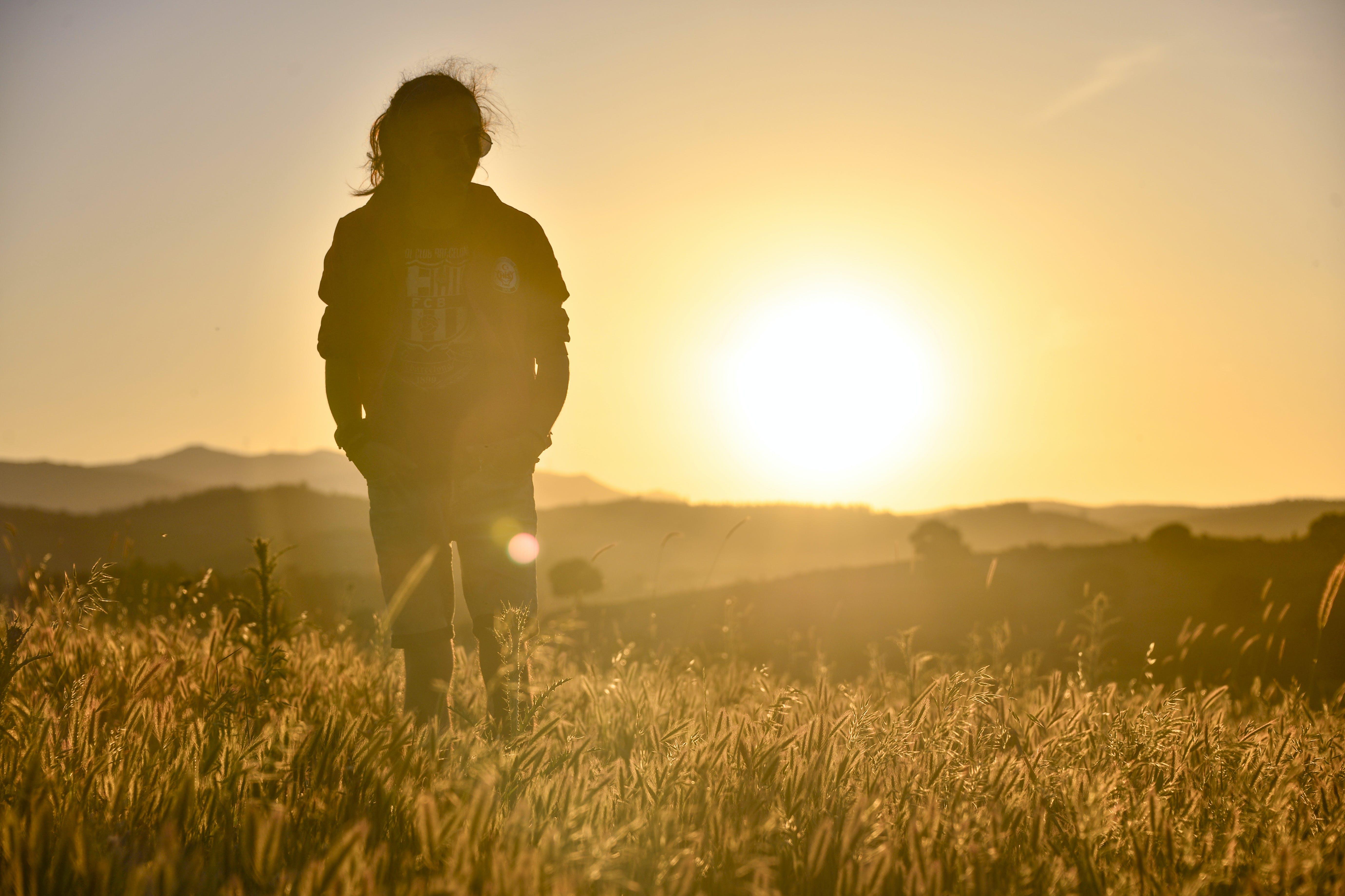 Gratis lagerfoto af dagslys, fotosession, gylden time, horisont