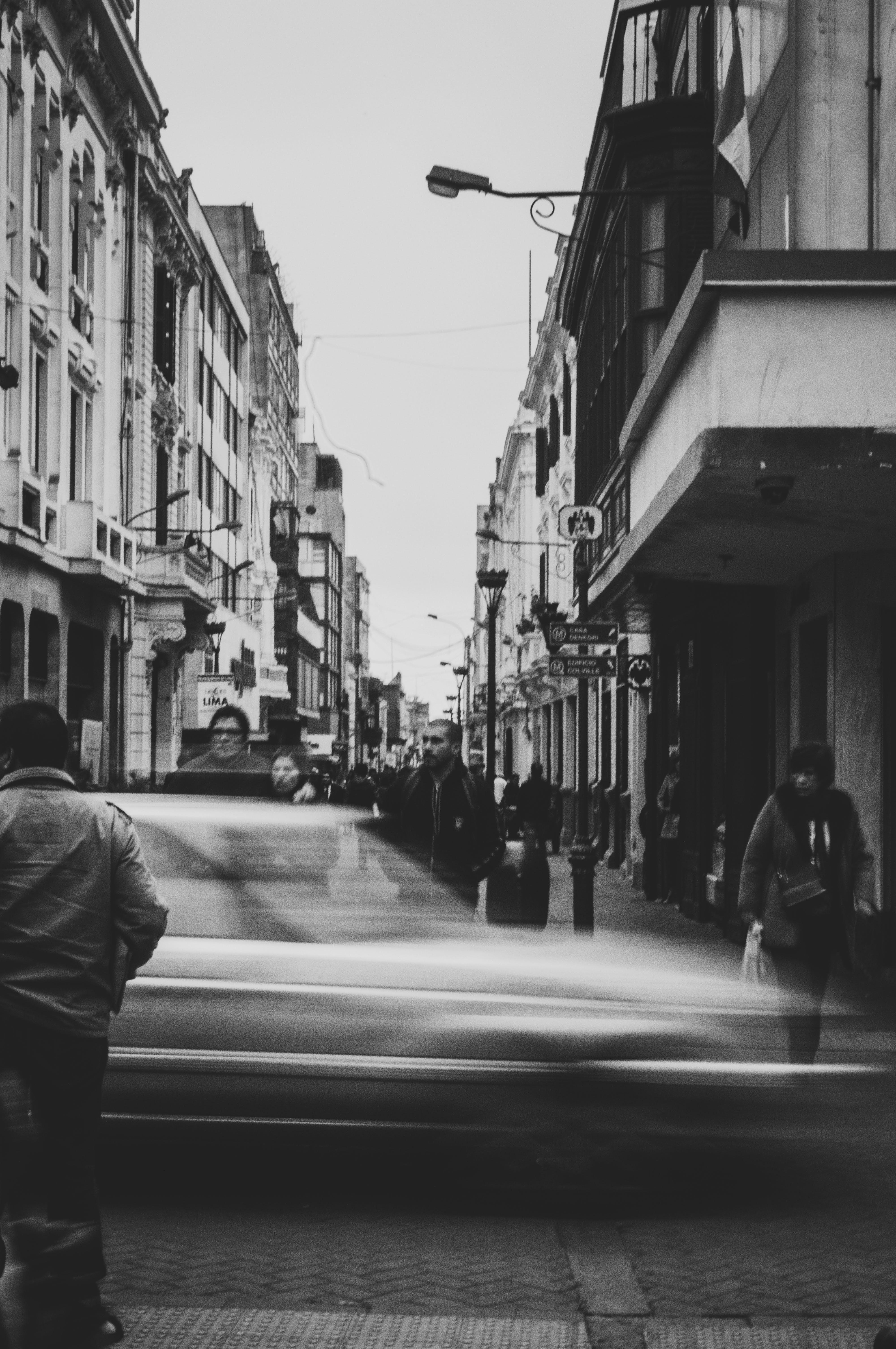 Foto d'estoc gratuïta de blanc i negre, caminant, carrer, carretera