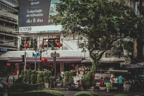 Free stock photo of Bangkok, street corner, tree